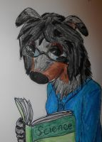 glasses by Colliequest