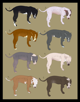 PITBULL SALE DRAW TO ADOPT/POINTS by peacedogg