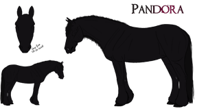 Pandora ref. - For Sale by Cerulean-Sky-Stables