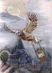 Flight of Hedwig by bubbasaurs