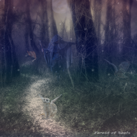 Forest of Souls by ISherri-sanI