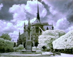 Notre Dame by 7upandy