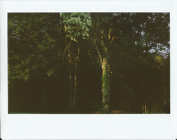 Instax 9 by chrisaclef