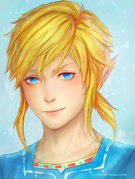 Link: Breath of The Wild by Suixere