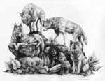 Wolf pack by Anniez19