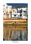 Udaipur Waterscape by FelixTo