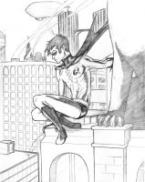 Rooftop Robin by bredenius