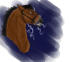 Power by RiverView-Equestrian