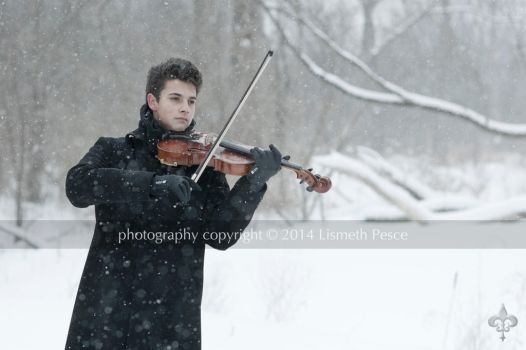 The Winter Song by Capricuario
