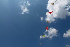 Kites in the Sky by Nekromantes