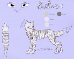 Silver Reference Sheet by Dragon-of-DC