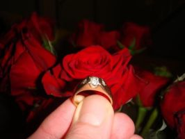 The Diamond Ring For Our Engagement by Endlessly-Love