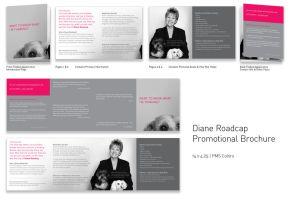 Diane Roadcap Brochure by TheRyanFord