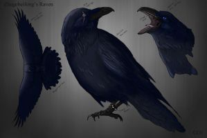 Raven-Commission by GuardianDragon1