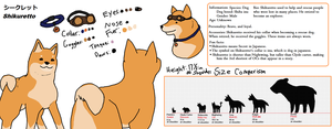 Shikuretto reference sheet by Artist-Who-Draws