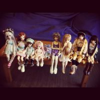 Our Fairy family (big number of dolls) by Anireda
