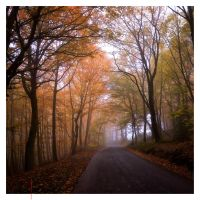 Just Another Autumn Road by EintoeRn