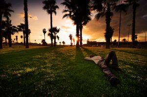 Sunset nap by titah