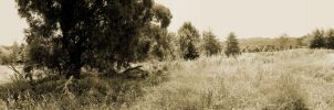 Sepia Fields Forever by MarzEz