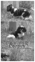 Cooper_my babeh by blondy0262