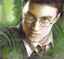 Harry Potter by AuroraWienhold