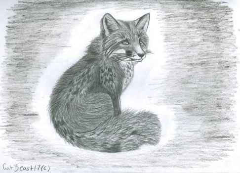 Red Fox by CatBeast17