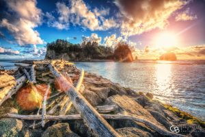 3rd Beach at La Push by DJKneo