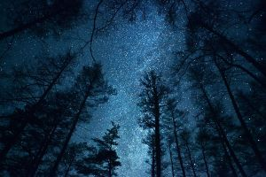 Milky way 3 by gryzlov