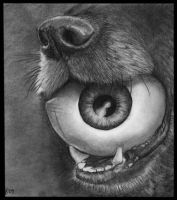 Dog and Eye Ball by missperple