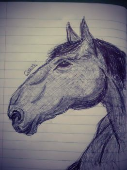 The horse. With pen .. by RennyValero