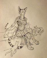 ''Daily'' sketch - Cat Lady Cat Lady by 0laffson