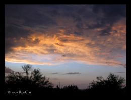 Ominous Monsoon Sunset Storm by RooCat