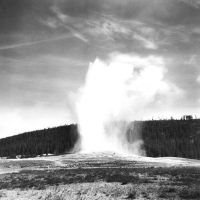 Old Faithful Print by rdungan1918