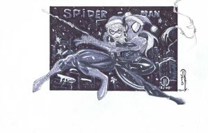Spiderman Black cat Christmas by JoeyVazquez