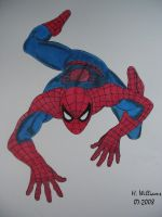 Spiderman the Wall Crawler by 12jack12