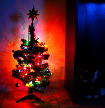 My Dinky Christmas Tree by iNightfaller