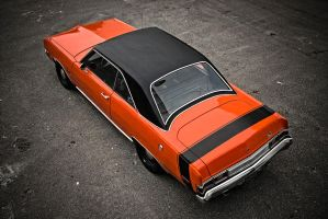 black n orange by AmericanMuscle