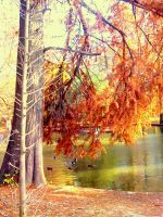 far away..in autumn by NaTuRe-In-My-BlooD