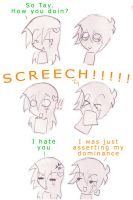 Tay's screech by iSketchy