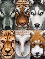 Wild Portraits - Set 1 by Kamakru