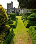 Levens Hall 135 by Forestina-Fotos