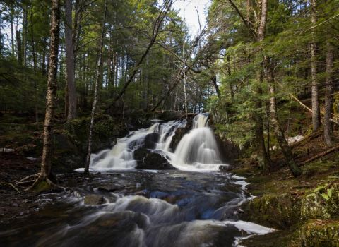 Patty's Falls - Drew Plantation, Maine 03 by Riot207Photography