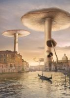 Venice Mushrooms by Shorra