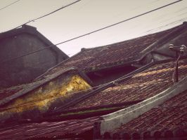 Faifo Impression --rooftops iii by Fennecia