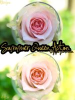 Summer Queen Action. by PurpleQueen7