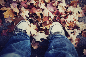 .Stepping Into Fall. by MyDefaultAdoration