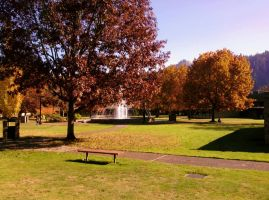 UCC in the Fall by Srod