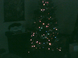 Chrismas Tree 2005 by yanagi-san