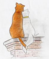Aristocats: Thomas O'Malley and Duchess by House-Girl