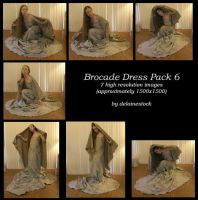 Brocade Dress Pack 6 by delainestock